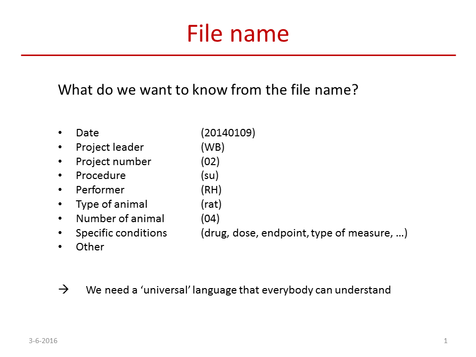 Best Practices File Names And Folder Structures Leiden
